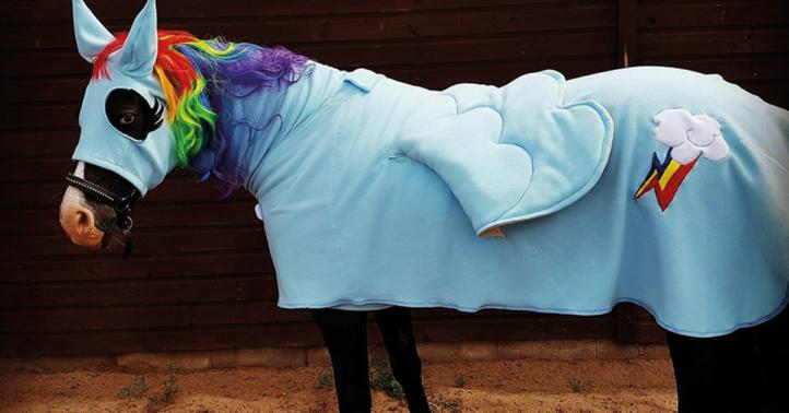 100%NL Magazine unicorn paard