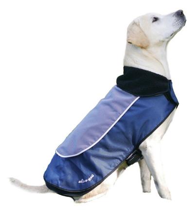 100%nl magazine hondenjas