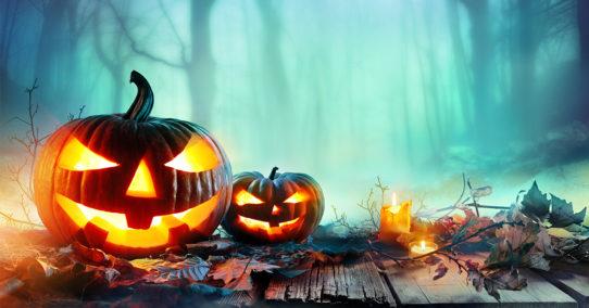 100%nl halloween