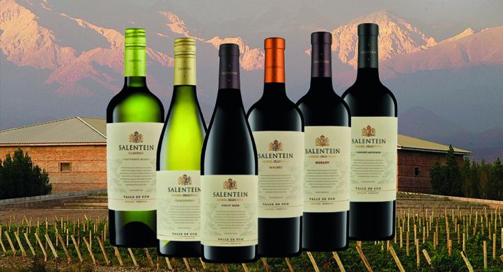 100%NL Magazine Salentein wijn