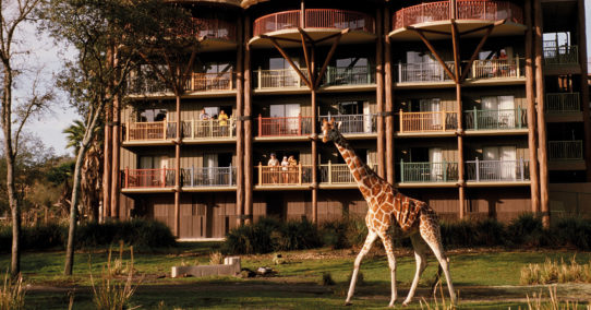 100%NL Magazine Disney giraffe hotel tui