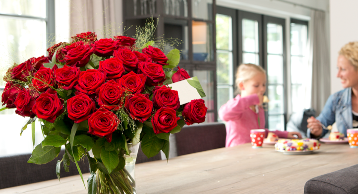 100%NL Magazine rode rozen