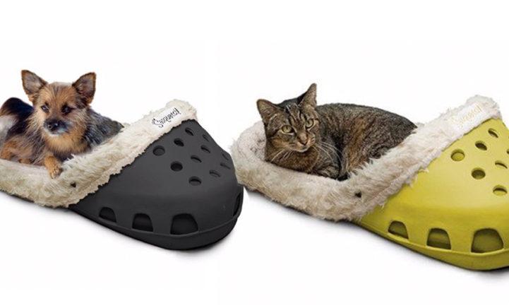 HEBBEN: een gigantisch schoenenbed voor je huisdier!