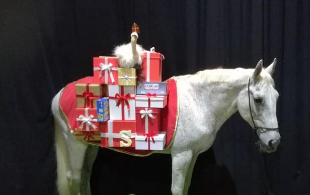 Verschrikkelijk nieuws: het paard van Sinterklaas is overleden