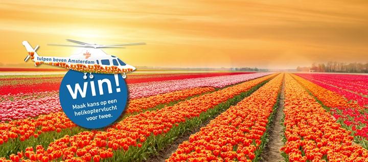 TIPS VAN INSIDER: hier moet je zijn in Volendam!