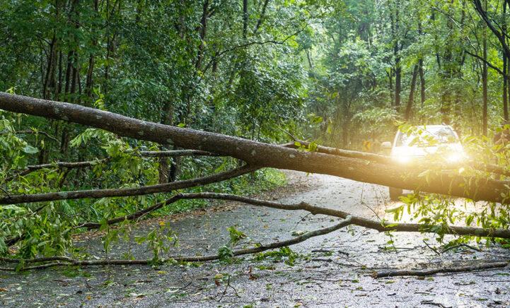 Héél veel regen en zware windstoten: zolang zal de storm nog duren